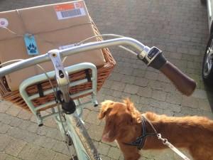 Nox mag mee naar de post